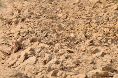 Dry soil in Esarn Thailand on March