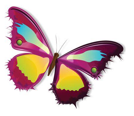 linha arte borboleta multi color Ilustra��o
