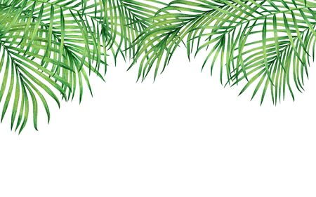 Watercolor painting frame tropical leaves coconut,palm,green leaf on white background.Watercolor hand drawn illustration tropical exotic leaf card or design,wedding invitation,posters or save the date
