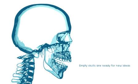 No brain. no idea. Empty skulls are ready for new ideas. x-ray vector. Stockfoto - 151021889
