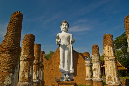 Buddha statue , Thailand Stock Photo - 14503485