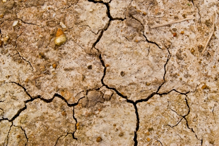 dry earth texture Stock Photo