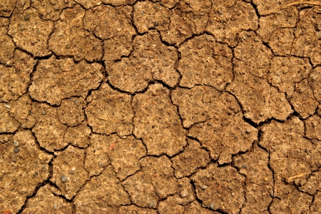 dry earth texture photo