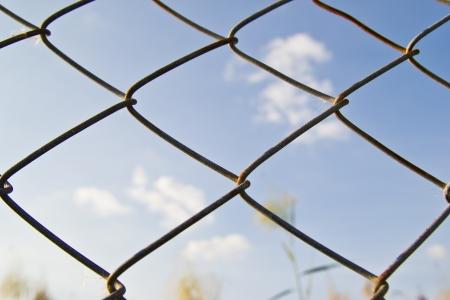 metal mesh and blue sky photo