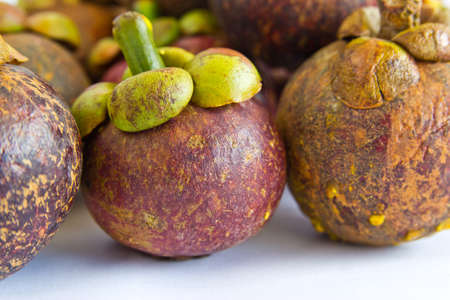 tropical fruit, mangosteen photo