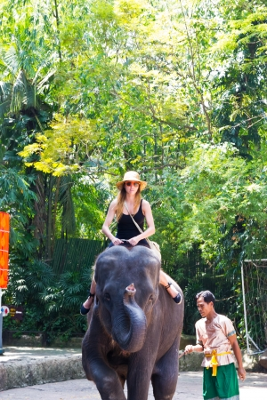 bANGKOK, THAILAND - oct 20: a tourist rides the elephant in a zoo opens safari world
