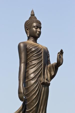 buddha portrait isolated on white Stock Photo - 17584226