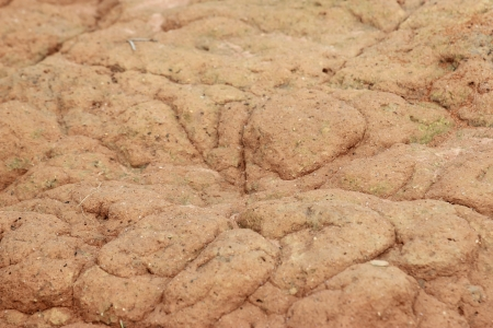 sandy soil: sabbia formicaio. Il cono sopra la dimora di scavo formiche nere Lazius in un terreno sabbioso Archivio Fotografico