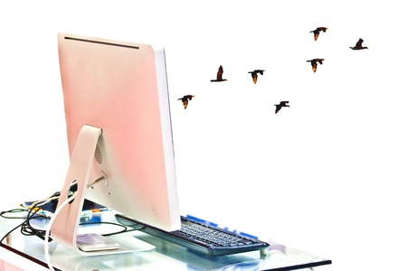 widescreen: computer is locate on a table