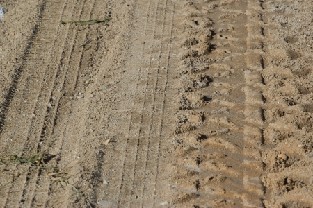 Wheel traces on the beach Stock Photo - 20389426