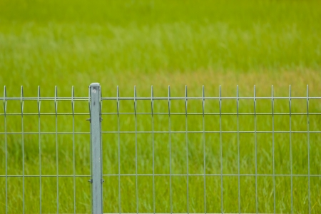 Metal fence on the grassland photo