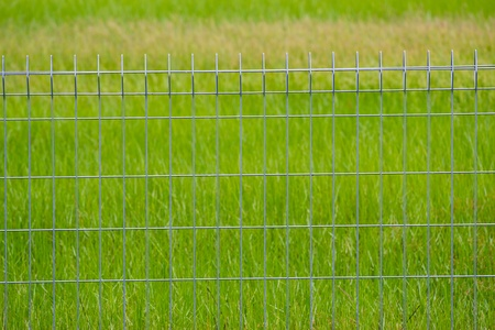 Metal fence on the grassland Stock Photo - 20885447