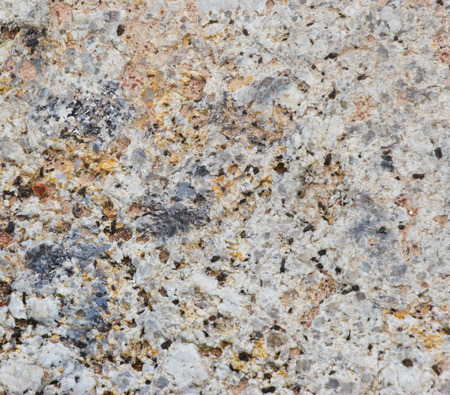 texture made of shell and stone pieces. photo