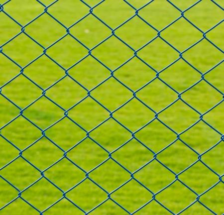 Rete metallica recinto di filo con erba bassa Archivio Fotografico - 22914697