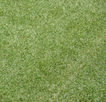 Artificial rolled green grass photo
