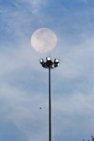 Stadium halogen spot light pole photo