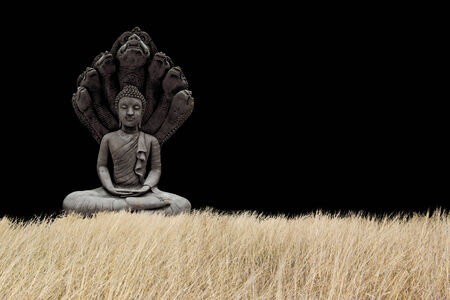 buddha Stock Photo - 25134033