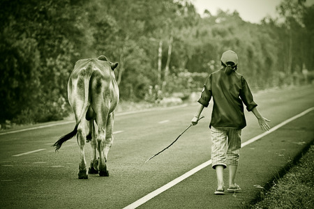 Way of life Countryside in thailand photo