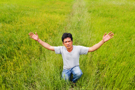 Man standing in green rice. photo