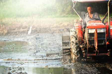 Tractor plowing  rice field in thailand photo