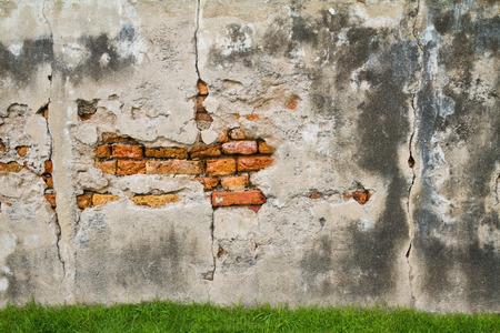 decrepit: Moldy brick wall background