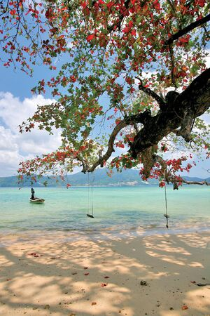 Landscape of Andaman Sea taken from the beatiful beach of Phuket Island  The beach of phuket thailand is buetifull and the most pupular world wide come to here for travel and relaxation for long holidays  Sea view of Patong beach  A boat on Patong beach Stock Photo - 13790569