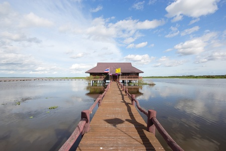 Thale Noi in Phatthalung Province, is one of the biggest lakes in Thailand. The name Thale Noi means small sea. photo