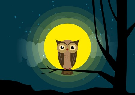 Owl sitting on a tree branch background of the moonlight.  All in a single layer. Vector illustration. Owl sits on a tree branch under the moon and starry sky.