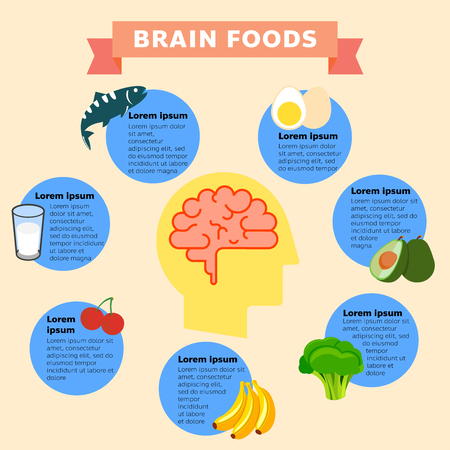A vector illustration of brain foods infographic. Brain food vector flat infographics. Vector flat cartoon illustration icon. All in a single layer. Vector illustration. Ilustração