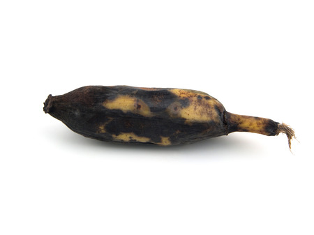 moulder: Brown Over Ripe Banana isolated against white background.