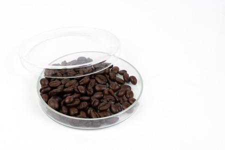 caffeine molecule: coffee beans in petri dish
