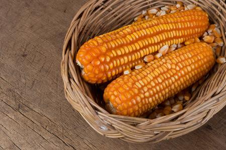 wicker basket: corn cob in wicker basket Stock Photo