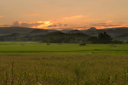 viewfinderchallenge3: Sunset behind the mountains in the rice field and corn field