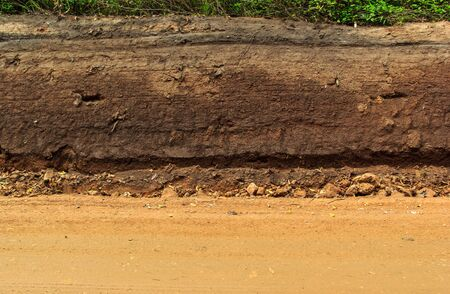 canyon walls: Section of  dirt road.