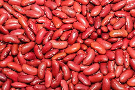 adzuki bean: Red adzuki bean