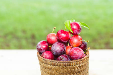 proprietary: plums in the basket Stock Photo