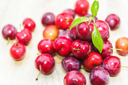 proprietary: plums on wooden
