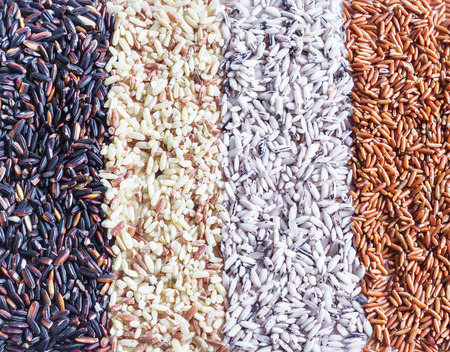 brown backgrounds: Food background with of rice variety . rice mixture. brown rice, black rice, white rice.