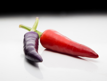 eventually: Ripening chili peppers. They are currently purple, but will eventually turn red and be very hot! Stock Photo