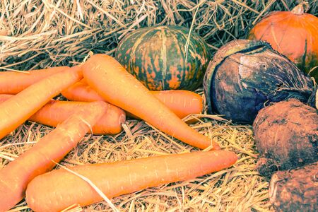 harvest cone cornucopia: Retro or vintage image with lots of fresh vegetables and fruit .