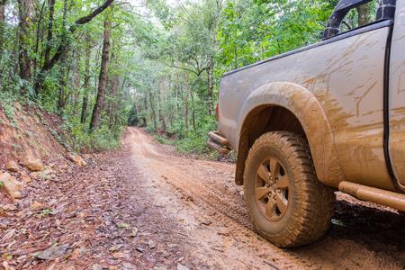 dirt: car tires in dirt road Stock Photo