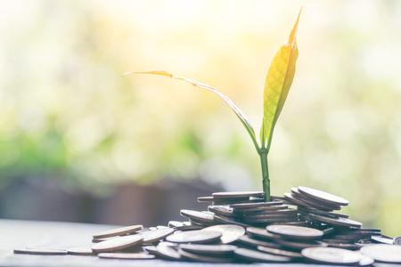 Immagine di una pila di monete con una pianta in cima per affari, risparmio, crescita, concetto economico