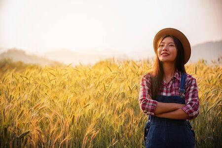 Farmer in ripe wheat field planning harvest activity, female agronomist looking at sunset on the horizon Stock Photo