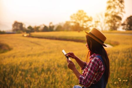 Female farmer using tablet computer in gold wheat crop field, concept of modern smart farming by using electronics, technology and mobile apps in agricultural production