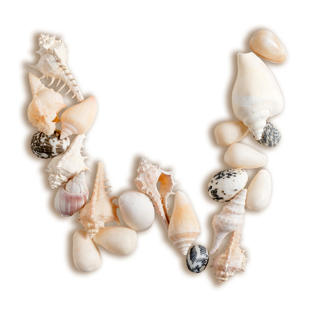 various sea shells capital W on isolated white background with clipping path. Stock Photo