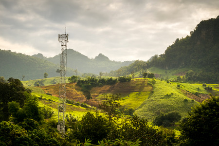 Cell site Post in the nature, telecommunication technology pillar in farm near forest morning. Stock Photo