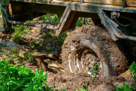 ロード ホイールを泥で立ち往生。フォレスト ・泥ホイール地形。
