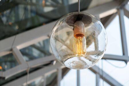 Vintage Retro Light Bulb in the Sphere Glass. iNdoor Garden Decoration.