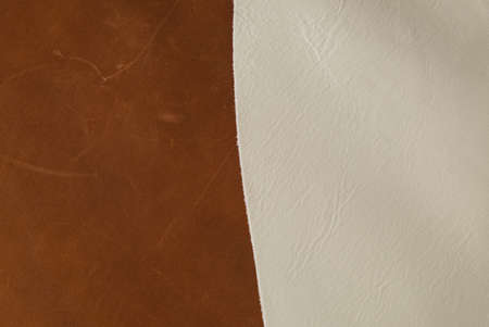 Back Side of a Genuine Leather Texture Background 版權商用圖片