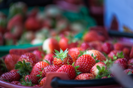 fresh strawberry from the farm to sell in the market on Mon Jam tribal village in Chiang Mai Stock Photo